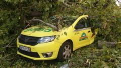 Barbat ranit grav, dupa ce un copac s-a prabusit peste un taxi in Bucuresti