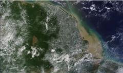 Bariera masiva de corali, gasita in Amazon (Video)