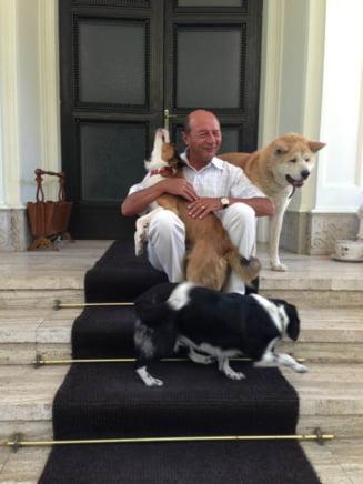 Basescu, nemultumit de casa din Gogol: Se scurge apa din plafon