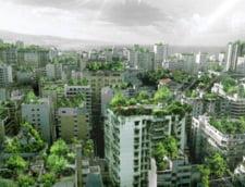 Beirut, pe cale de a deveni cel mai verde oras - Bucurestiul i-ar putea urma exemplul