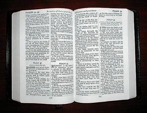 Biblia este contestata de arheologi. Argumentul? Domesticirea camilelor