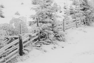 Bilant MAI: Cele mai afectate judete de vremea severa din ultimele 24 de ore