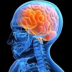 Bolile neurologice ii afecteaza tot mai mult pe tineri