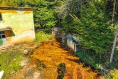 Bomba ecologica din Apuseni. Mina abandonata care ascunde in adancuri zacaminte uriase de aur FOTO VIDEO