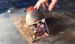 Bomba incendiara din Al Doilea Razboi Mondial, gasita pe plaja