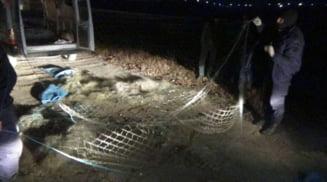 Braconaj piscicol pe raul Olt. Doi barbati s-au ales cu dosar penal