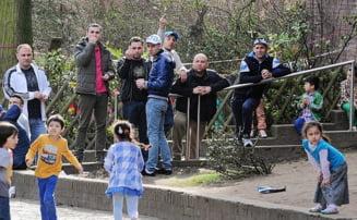 Britanicii strang, zilnic, 5.000 de semnaturi sa scape de imigrantii romani