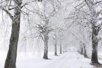 Bucurestiul, sub cod galben de ninsori. Cand intra in vigoare avertizarea meteorologilor