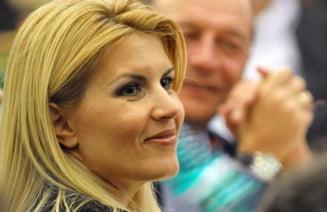 Bustul din chirpici al Elenei Udrea a fost furat