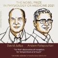 Câștigătorii Premiului Nobel pentru Medicină pe 2021 au fost desemnați. Pentru ce descoperire au fost laureați cercetătorii