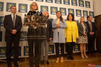 C. Pirvulescu: PNL a inregistrat un esec rasunator. E cel mai important moment al carierei prezidentiale a lui Klaus Iohannis - Interviu