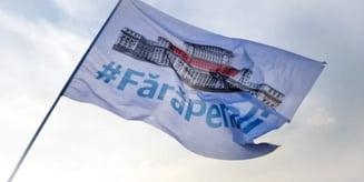 CCR a amanat o decizie privind initiativa #FaraPenali a USR