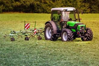 CCR a decis ca este neconstitutionala Legea care prevede instituirea unui ajutor de stat pentru despagubirea producatorilor agricoli afectati de fenomene meteorologice