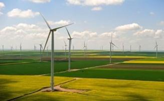 CEZ a suspendat investitia in parcul eolian din Cogealac