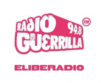 CNA a retras licenta Radio Guerrilla - Gusa acuza Guvernul (Video)