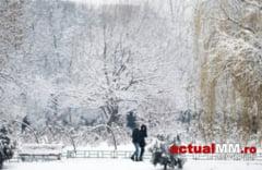 COD GALBEN DE VREME REA - Lapovita si ninsoare si vant puternic in Maramures pana miercuri seara