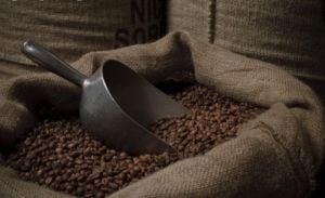 Cafeluta: aliment, drog sau o afacere profitabila?