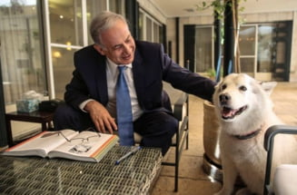 Cainele lui Netanyahu si-a infipt coltii in doi invitati de Hanuka