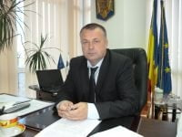 Cainii comunitari in atentia primariei Ramnicului si DSVSA Valcea