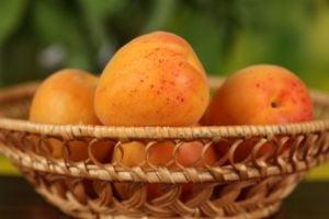 Caisele si vitamina B17 - dusmanii cancerului