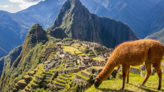 Calatorii mai usoare catre Machu Picchu, una dintre cele sapte minuni ale lumii