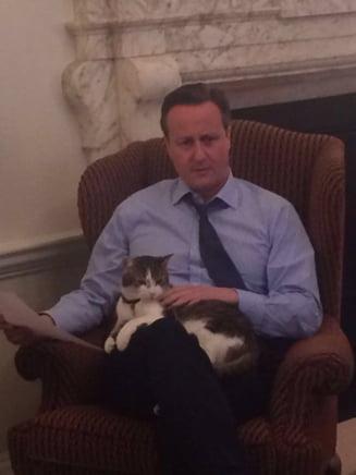 Cameron a primit aproape 20.000 de lire sterline, prima de la stat dupa ce si-a dat demisia