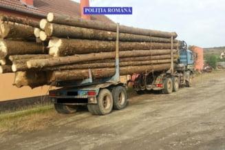Camion de 20.000 de euro, confiscat pentru ca transporta ilegal lemn evaluat la 3.000 de lei