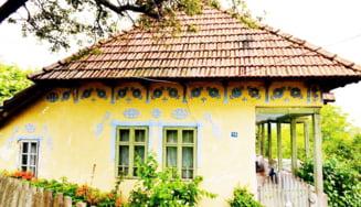 Campanie pentru restaurarea casei Elisabetei Rizea