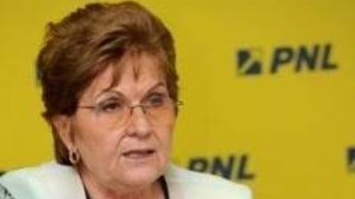 Campeanu: Bugetul Ministerului Muncii va face fata cheltuielilor cu pensiile si salariile