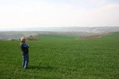 Campionii subventiilor APIA pentru suprafete agricole