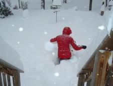 Canada, afectata de o furtuna de zapada: 100.000 de oameni nu au curent electric