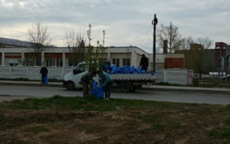 Cantitate uriasa de gunoi stransa din oras de catre functionarii Primariei