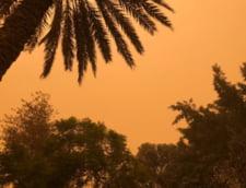 Capitala Egiptului, lovita de o uriasa furtuna de nisip: Cerul a devenit rosiatic (Foto&Video)