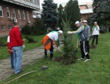 Capitala creste verde: 1.500 de arbori si arbusti plantati in campusul Politehnicii