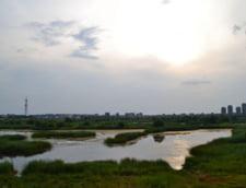 Capitala delta lac