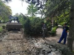 Capitala se sufoca intre betoane! Cum salvam putinele spatii verzi ramase in oras