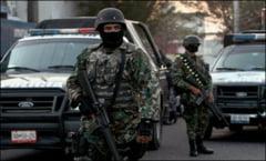 Captura uriasa de cocaina: Peste 3 tone confiscate de politisti (Video)