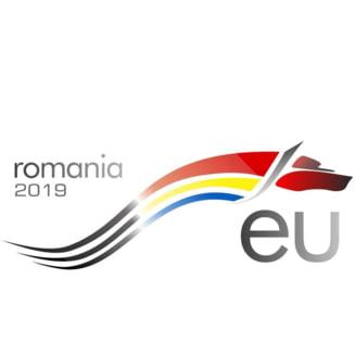 Care este logo-ul Romaniei pentru presedintia UE. Rares Bogdan, Dana Grecu si Bogdan Chirieac, printre cei care au decis