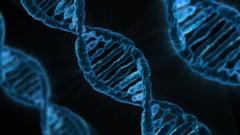 Care este noul virus cu gazda comuna cu SARS-CoV-2 care ii sperie pe oamenii de stiinta