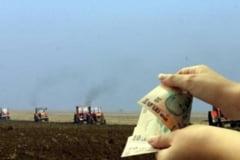 Care este stadiul platii subventiilor in agricultura