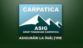Carpatica Asig va intra in faliment - ce alte companii de asigurari au mari probleme