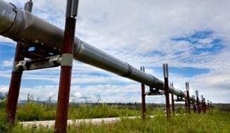 Cartelul benzinarilor a fost dovedit, consumatorul e inca buimac, dar se bucura (Opinii)