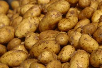 Cartoful, alimentul de baza al romanilor - suntem fruntasi in UE. Se cere reducerea TVA