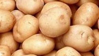 Cartoful crud e toxic