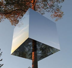 Casa invizibila din copac sau cubul cu pereti de oglinda (Galerie foto)