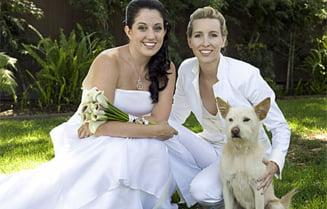 Casatoriile homosexuale, legalizate in New York
