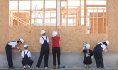 Case pe structura de lemn: Avantaje si dezavantaje