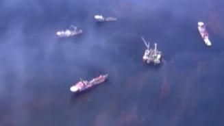 Cat a costat BP dezastrul ecologic din Golful Mexic - cea mai mare despagubire din istoria SUA