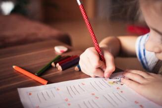 """Cat de chinuitoare este scoala online pentru copiii cu deficiente: """"E aproape imposibil sa adaptezi materia online pentru ei"""""""