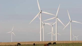 Cat de competitiva e de fapt energia verde, in lipsa subventiilor